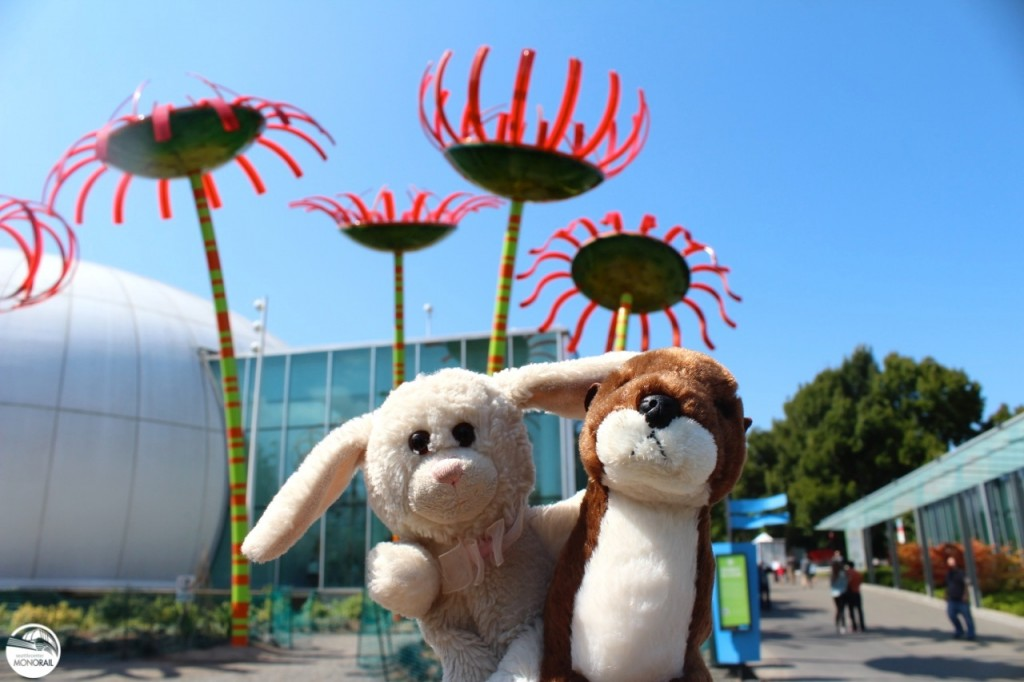 Monorail Bunny and Otter Sonic Bloom